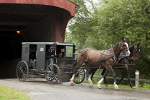 horse and carriage through a covered bridge