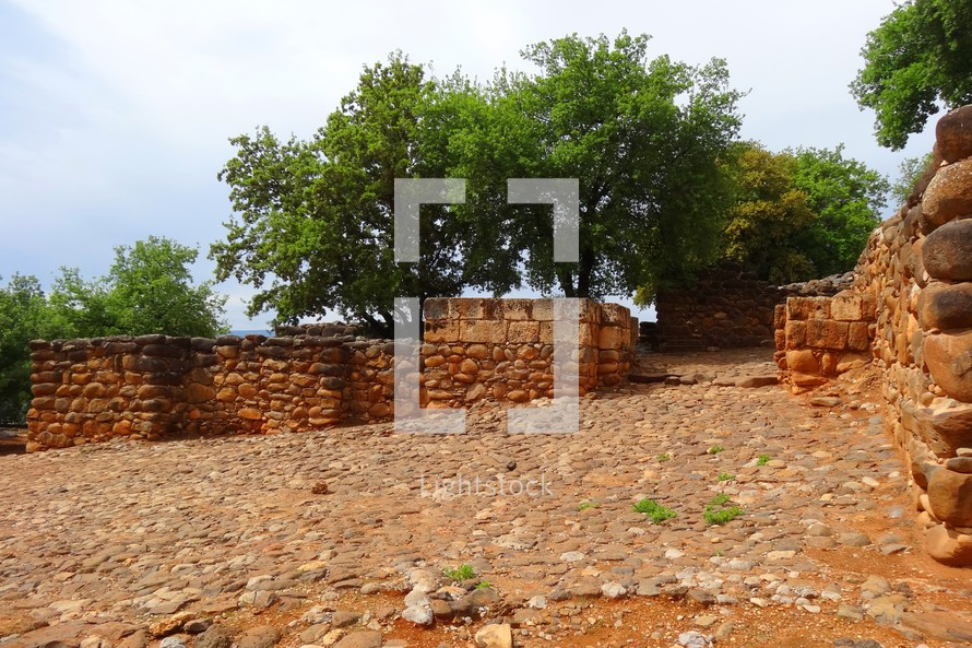 The walls and gate at the ancient city of Dan