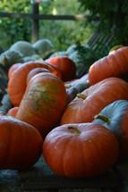 big orange and green pumpkins in a wagon