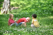 children playing in the grass