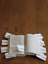 pieces of paper with words on them sticking out of a Bible