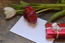 A little present with a blank piece of paper and a red and a white tulip.