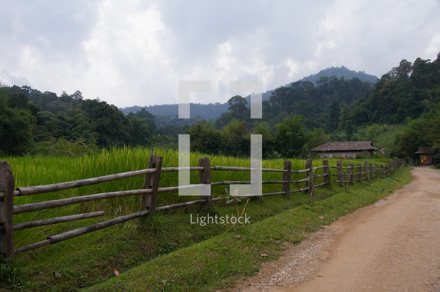 wood fence along a dirt road in the jungles of Myanmar