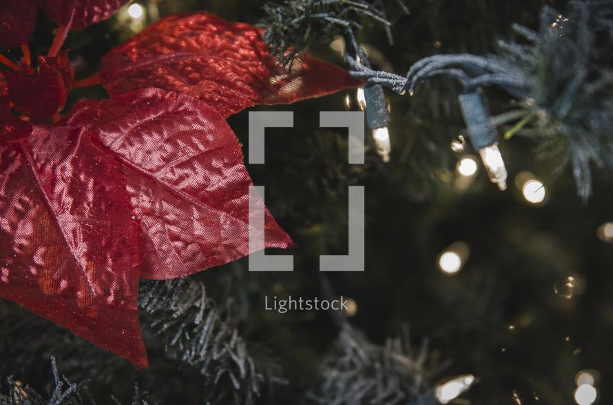 poinsettia and Christmas lights on a Christmas tree