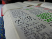 notes on the edge of pages of a Bible