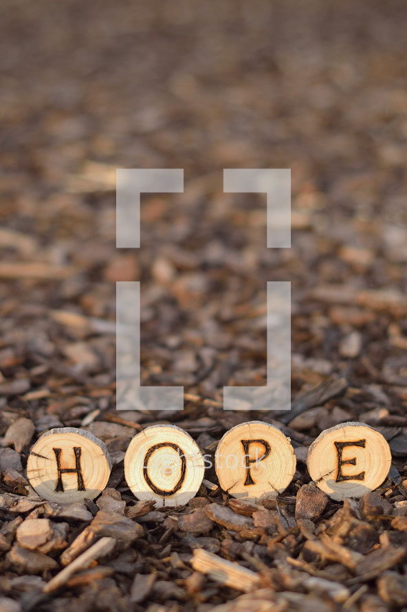The word HOPE burned into wood pieces.