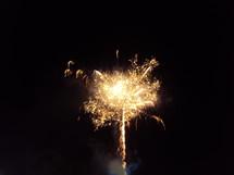 fireworks bursting in a night sky