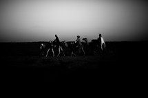 wisemen traveling on camels at dusk