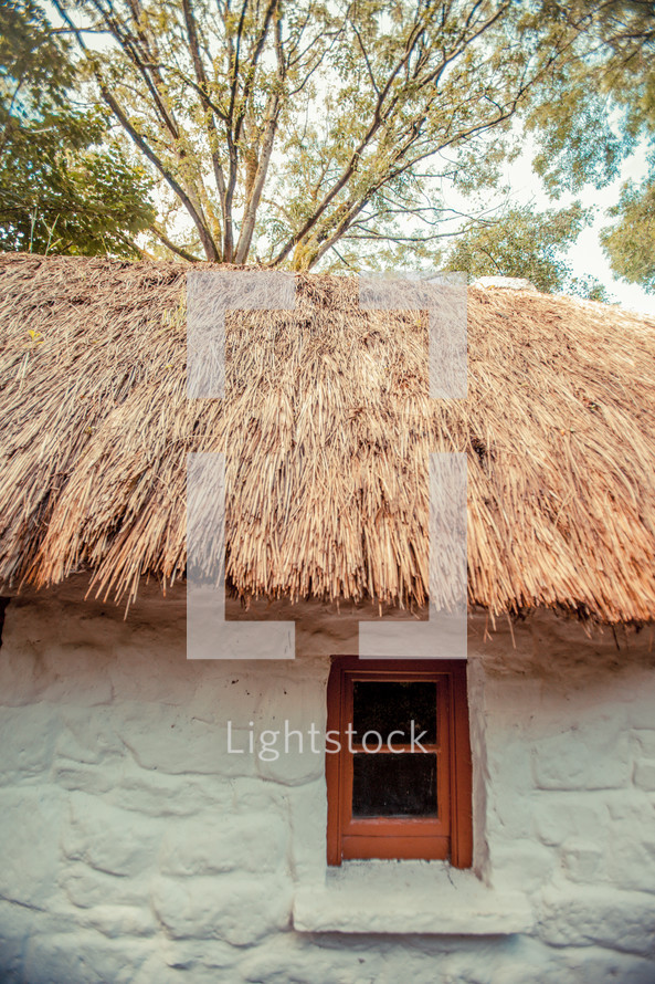 grass thatched roof