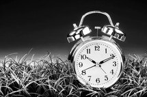 alarm clock in grass