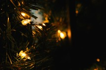 Christmas lights and garland
