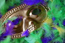 Mardi Gras mask and feathers.