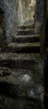 Stone steps covered in leaves.