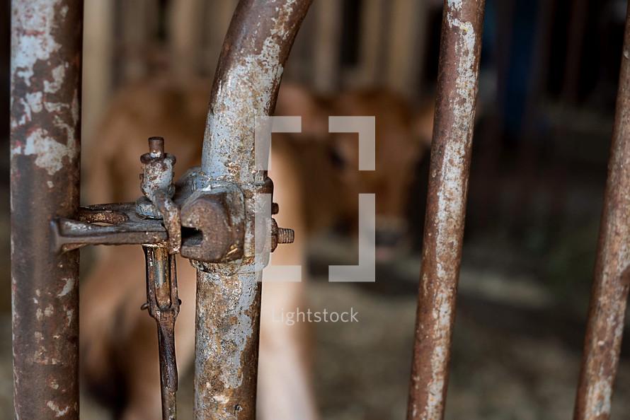 latch on a rusty metal gate
