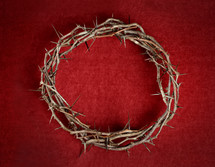 crown of thorns against a red background