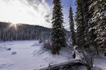 Winter Wonderland - Fresh snow along the Bighorn River, Alberta Canada