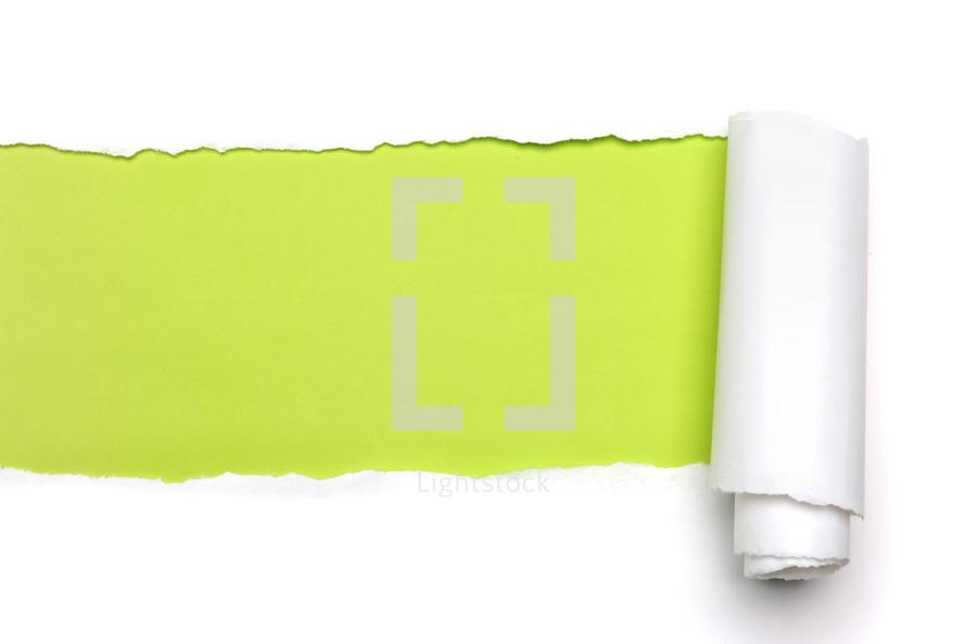 Green beneath torn white paper.