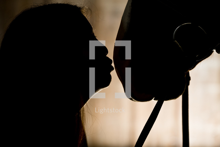 silhouette - woman kissing horse on nose
