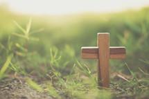 wooden cross in green grass