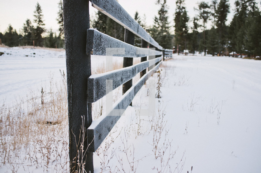 fence line dusted in snow