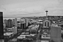 Seattle skyline and Space Needle