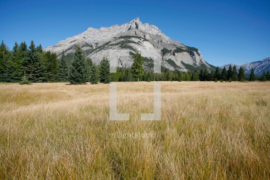 mountain peak of mount cascade