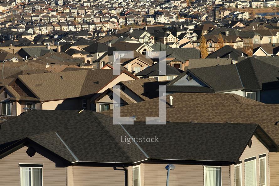 Rooftops in urban housing development