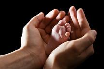 Loving hands gently embracing infant foot, black background