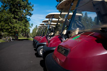 Row of golf carts on asphalt near trees.