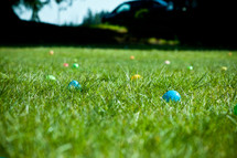 plastic Easter eggs hidden in the grass
