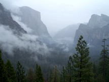 Cloud covers the mountains and cliffs where waterfalls and tall pine trees cover the misty mountains..