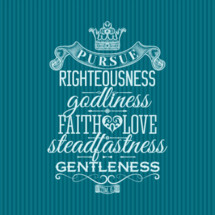 Pursue Righteousness godliness faith love steadfastness gentleness 1 Timothy 6:11