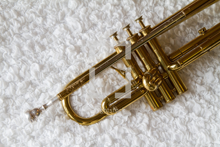trumpet on a rug