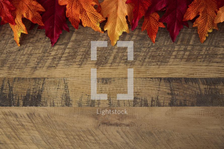 fall leaves border on wood