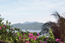 tropical island mountains and purple flowers