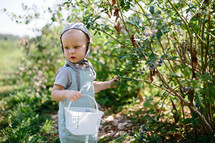 toddler boy exploring in a forest