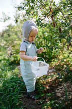 toddler boy exploring outdoors with a basket