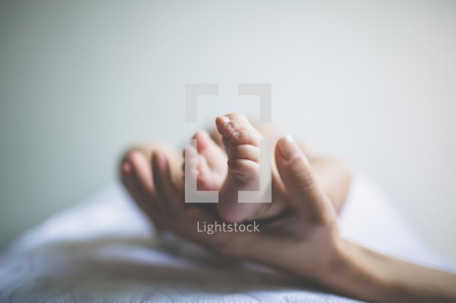 hand holding an infants bare feet