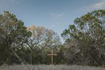wood cross outdoors
