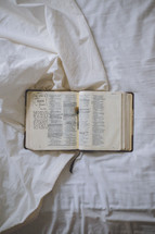 notes in an open Bible on a bed