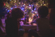 boys playing with a nativity scene under a Christmas tree