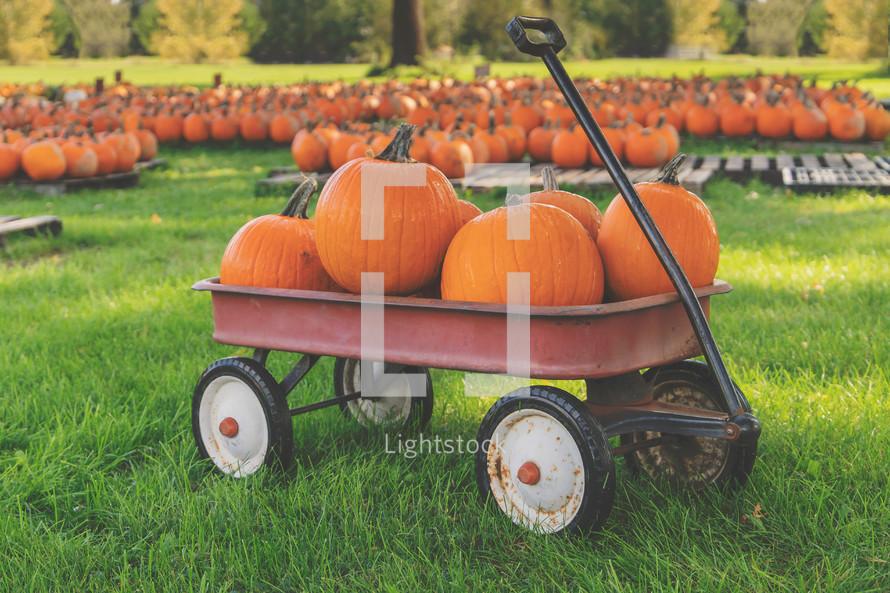 pumpkin patch wagon background for bulletin event slide social