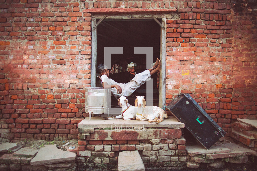 A barefoot man with goats on the porch sitting in the doorway of an old brick building, leading out into the alley.