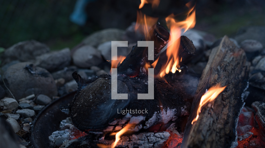 logs burning in a fire