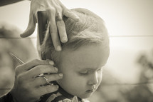 A little boy getting a haircut.