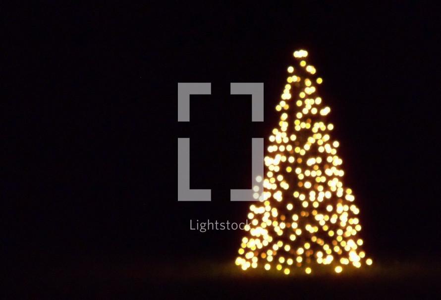 Christmas Tree, Christmas lights, worship, celebration, Christmas lights in the background, evening
