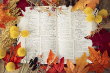 frame of fall leaves around a Bible
