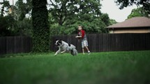 Bot playing fetch with a dog outside.