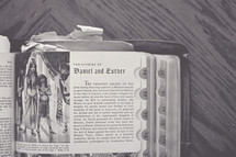 A book or bible,  open to the story of Daniel and Esther laying on a wooden surface