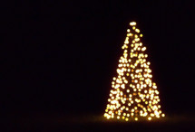 Christmas Tree, Christmas lights, worship, celebration, Christmas lights in the background, evening